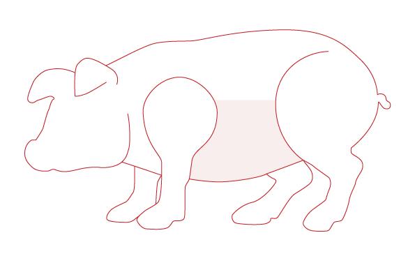 Carne de cerdo